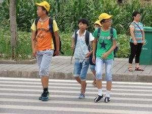 Walk This Way surveys 37 primary schools along BRT corridor July 2017